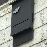 Bat House on Wall