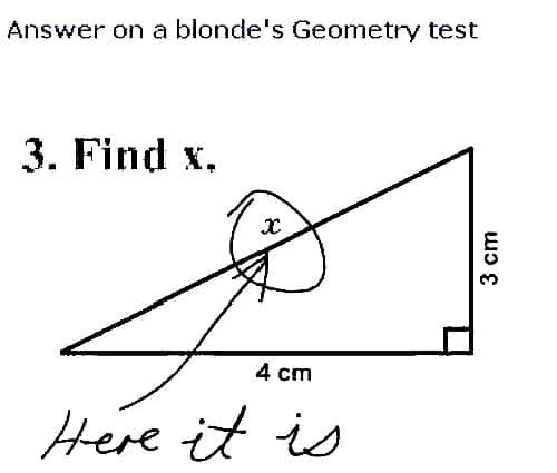 Blondes Geometry Test