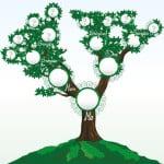 Irish Family Tree